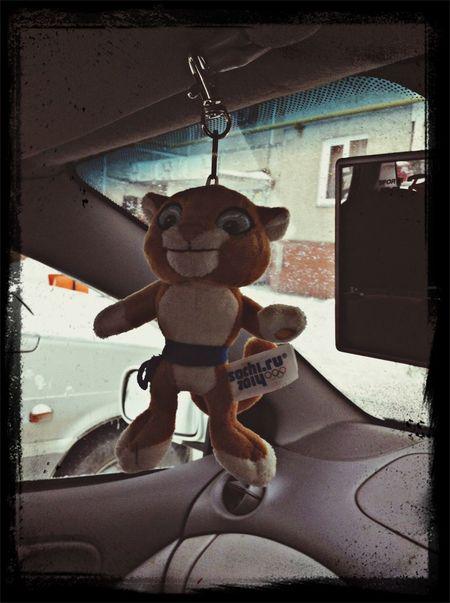 My passenger )))))