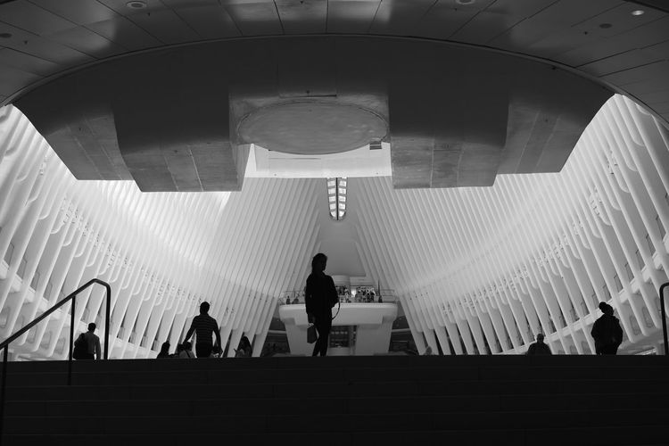 A different perspective of the Oculus Architecture Staircase Built Structure Steps And Staircases Ceiling Modern Silhouette Oculus NY Oculus Oculus Train Station New York City Manhattan Modern Architecture The Architect - 2019 EyeEm Awards