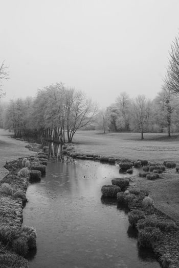 Nature Water Tranquility Winter Outdoors Beauty In Nature Tree Treelife Wintewintertime Landscapes Landscape Nature Photography Nature_collection Naturelovers Landscape_Collection Blackandwhitephoto Landscapes_captures Landscape_photography Frost River Garden Winter Is Coming