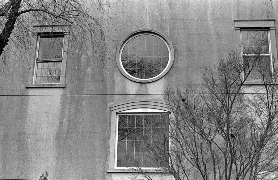 EyeEm Gallery Arch Architecture Bare Tree Branch Building Building Exterior Built Structure Circle Day Film Photography Filmisnotdead Geometric Shape Low Angle View Nature No People Outdoors Plant Residential District Shape Tree Wall - Building Feature Window