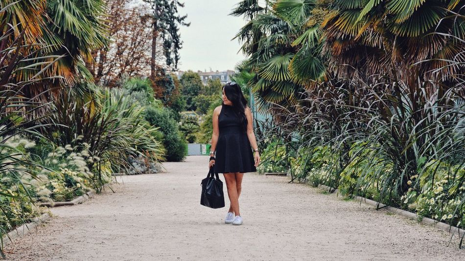 My little black dress. Paris Style Fashion Black Dress Green Botany Lifestyles One Person Plant Real People Tree Full Length Casual Clothing Leisure Activity Women Walking Growth Standing Nature Green Color Young Women
