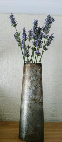 Hidden Gems  Secondhandshoplegendsvintage Silver Vase Tarnished BringsLife to the Lavenderflower Like They Were Meanttobe Together Beauty In Nature Simple Beauty Simple Moment EyeEm Team EyeEm Gallery 43 Golden Moments Croydon United Kingdom The Eyeem Collection At Getty Images Home Is Where The Art Is Eyeem Photography The Week Of Eyeem Eyeem Market Delicate Beauty EyeEm Nature Lover The Essence Of Summer