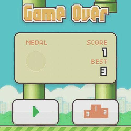 Flappy Bird Game Vscocam Taking Photos