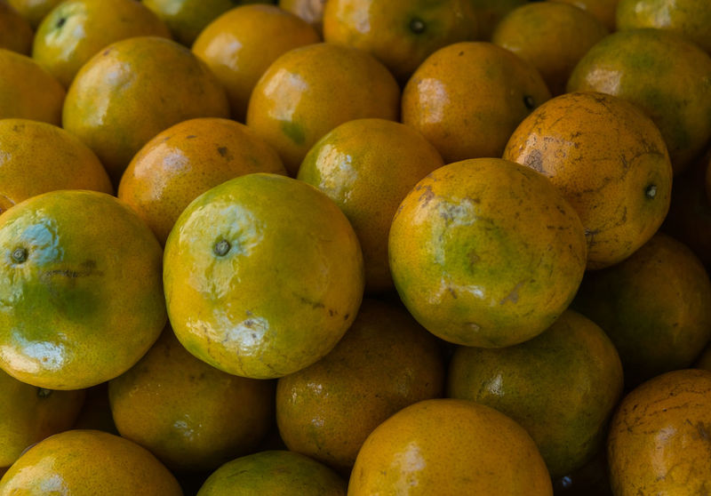 Abundance Backgrounds Close-up Day Food For Sale Freshness Fruit Full Frame Healthy Eating Large Group Of Objects Market Market Stall No People Orange Outdoors Repetition Retail Display Tangerine