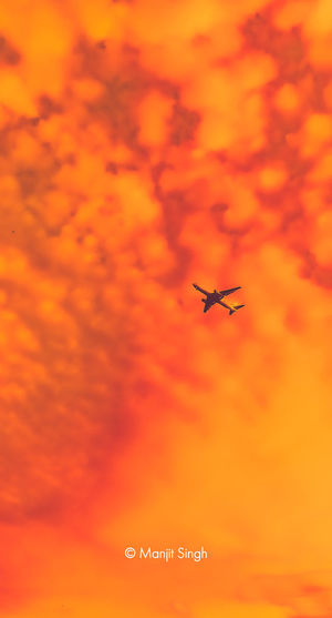 Low angle view of airplane flying against orange sky
