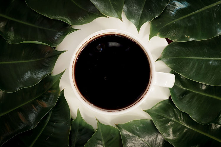 Directly above shot of tea cup and leaves