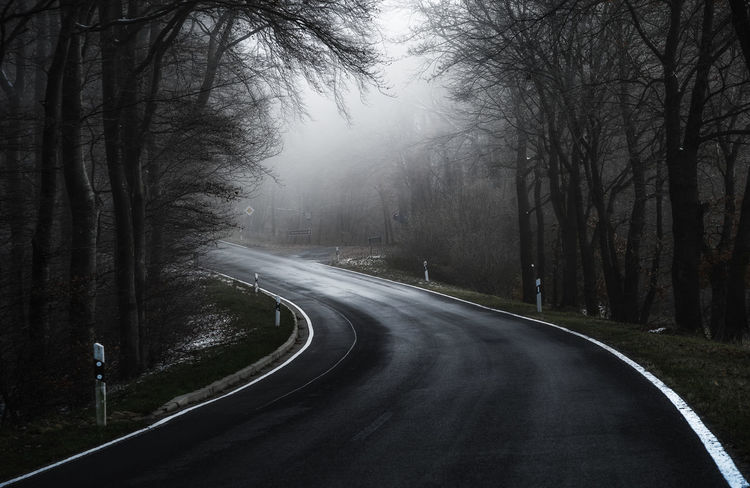Road Road Nature The Way Forward Outdoors Tree Www.alexander-schitschka.de Vulkaneifel The Week On EyeEm Scenics Nature Morning Mist Fog Nebel Street Straße Foggy Misty Explore Inspiration
