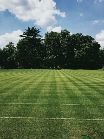 Grass courts, London. Beauty In Nature Cloud - Sky Day Field Grass Green Color Growth Landscape Nature No People Outdoors Scenics Sky Tranquil Scene Tranquility Tree