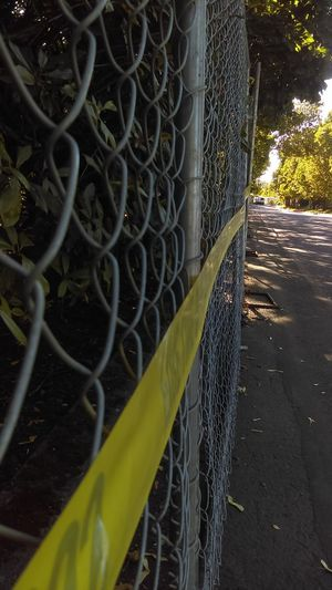 Do Not Cross Fire Line Keepout Yellow Tape Crime Scene
