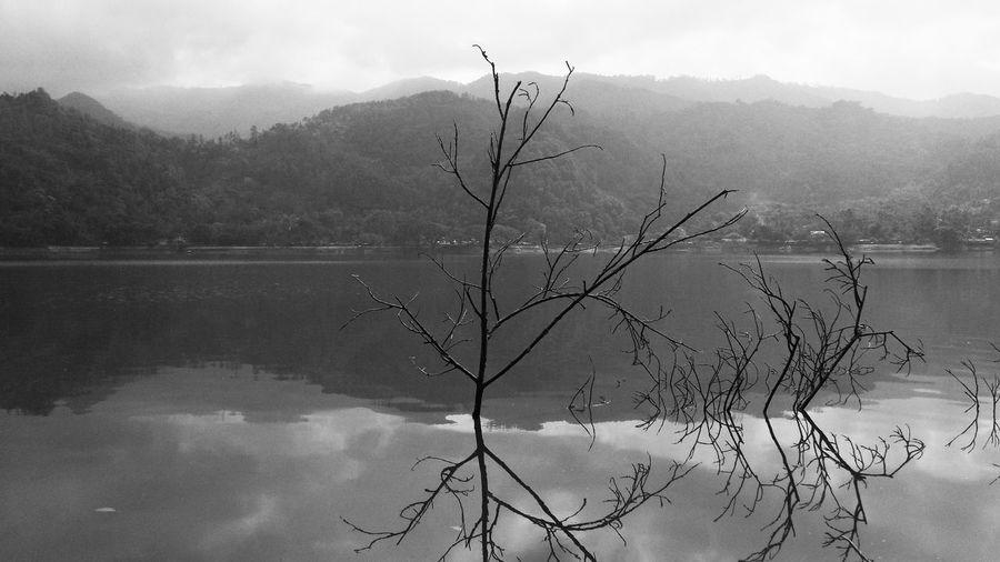 Black & White Lake View Bare Tree Beauty In Nature Black And White Branch Day Hazy  Idyllic Lake Lake View Lakeshore Mist Mountain Mountain Range Nature Outdoors Reflection Rijall Rijall Blues Rijallblues Scenics Sky Tranquil Scene Tranquility Tree Water