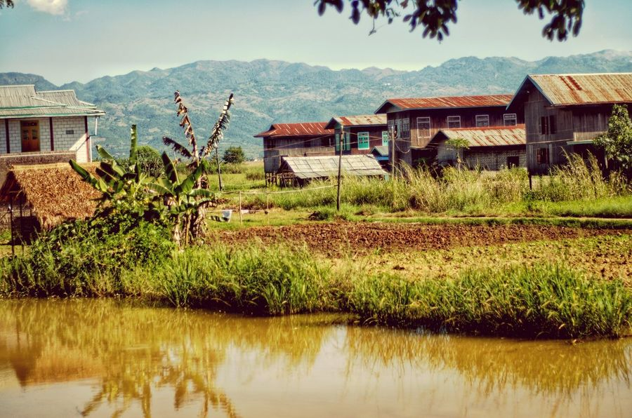 Inle Lake Myanmar Burma ASIA Agriculture Plant Sky Outdoors Water Rural Scene Architecture