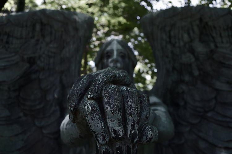 Haserot Angel