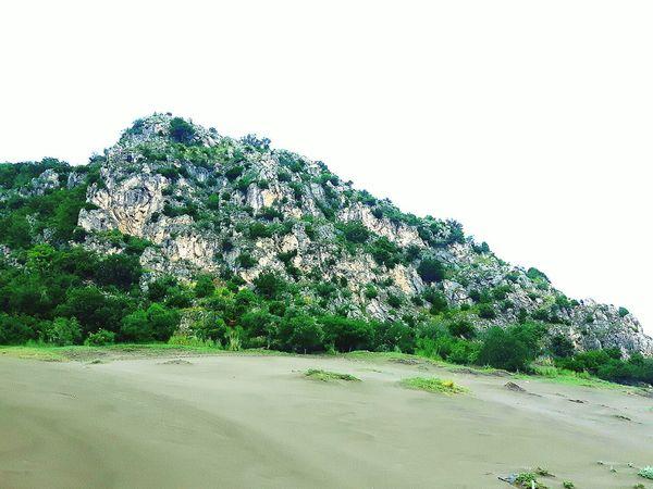 gwreen rocky hill on sandy beach Beach Sand Rock Formation Hill Sky Tree Sky Plant Green Color Lush - Description Lush Foliage Greenery Green Countryside