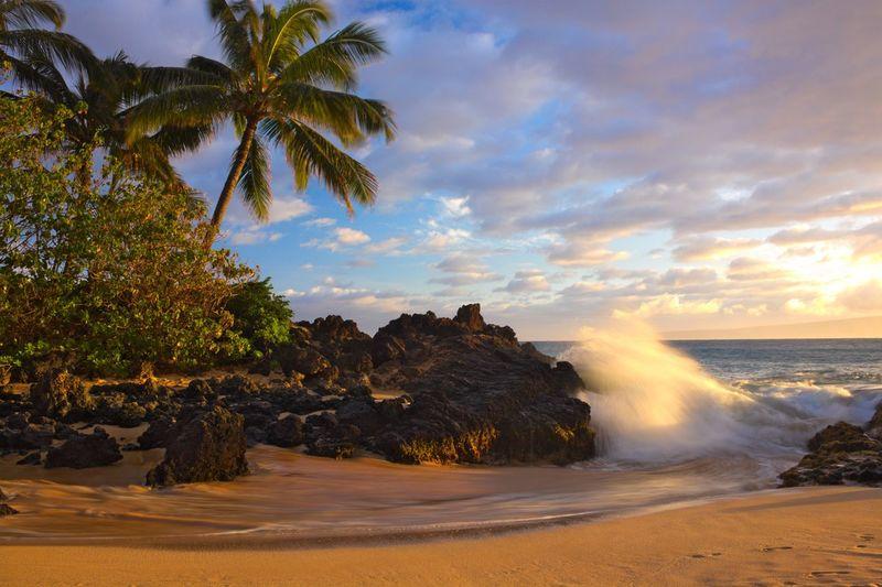 Maui Maui Hawaii Hawaii Hawaii Sunset Sunset Palm Tree Palm Trees Clouds And Sky Wave Waves Beach Sand