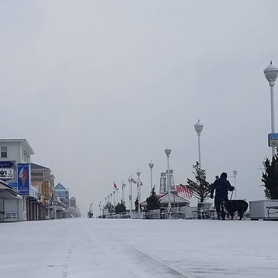 Two brave souls, a man & his pup, walking the snowy boards... Oceancitycool OceanCity Maryland Ocmd Weather Winter Snow