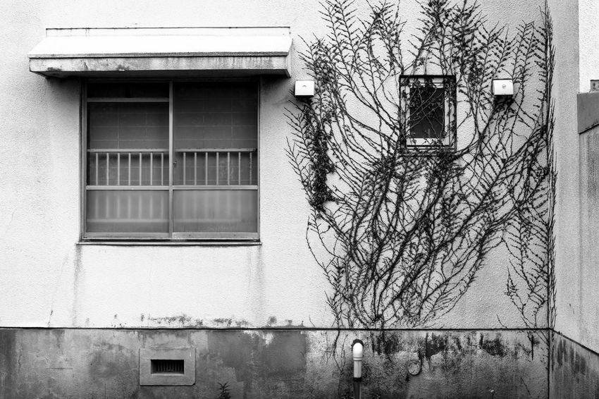 Art Artな写真 Black & White Blackandwhite EyeEm Best Shots Japan Photo Photography Snap Streetphotography スナップ モノクロ 写真家 日本 福井県