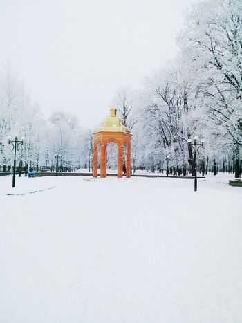 Park . Wintertime Cold Winter ❄⛄ Threes Snow ❄ Streetphotography Architecture Check This Out Ukraine City