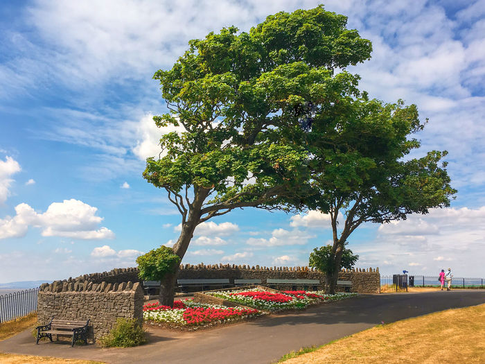 Promenade Architecture Beauty In Nature Built Structure Cloud - Sky Day Flower Flowering Plant Grass Green Color Growth Nature No People Outdoors Park Park - Man Made Space Plant Sky Sunlight Tree Water