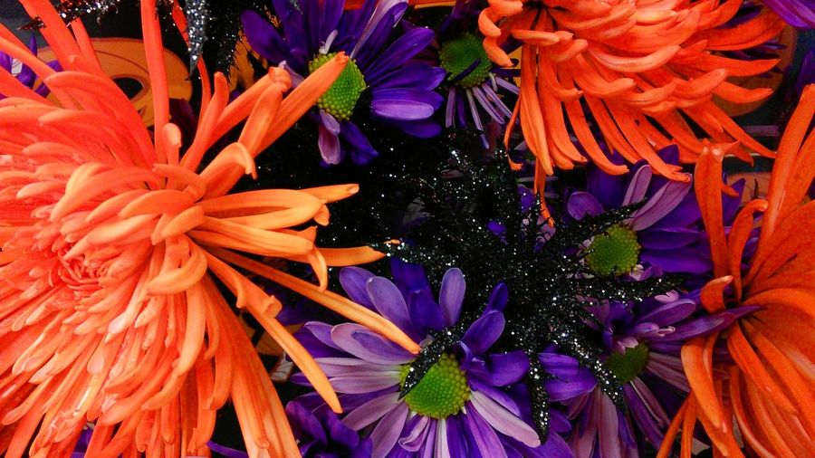 Textures And Surfaces Halloween Bouquet Check This Out