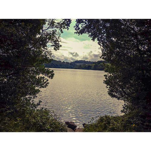 A lake through