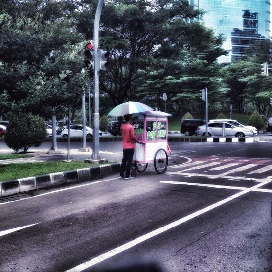 Vendors Street Vendor Streetphotography Traffic Light  Day Zebra Crossing Umbrella Umbrellas Umbrellamovement Umbrella☂☂ Dayshots EyeEm Best Edits Check This Out One Person Watching Day