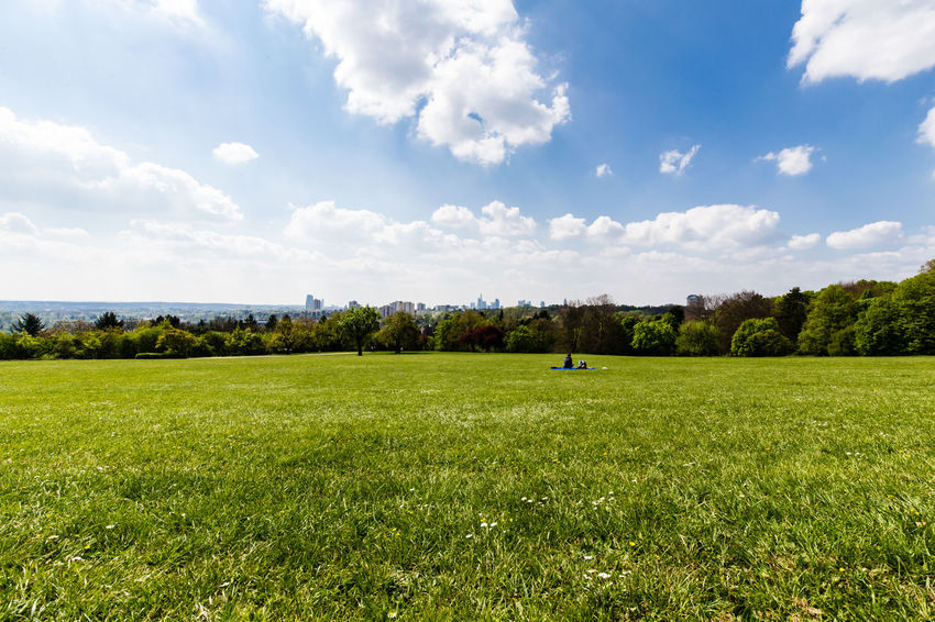 Scenic versus Urban / captured in Frankfurt - (c) Nidal Sadeq Frankfurt Frankfurt Am Main Skyline Beauty In Nature Cloud - Sky Day Field Germany Golf Golf Course Grass Green Color Growth Landscape Meadow Nature No People Outdoors Scenics Sky Sport Tranquil Scene Tranquility Tree