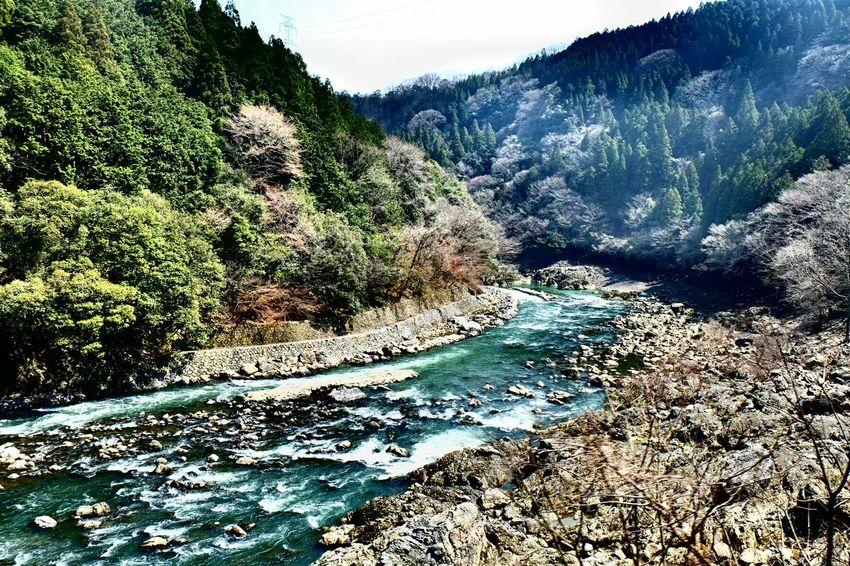 Nature Kyoto,japan Arashiyama Onthetrain Taking Photos Fujixe2 Getting Inspired River Moutains Nice View