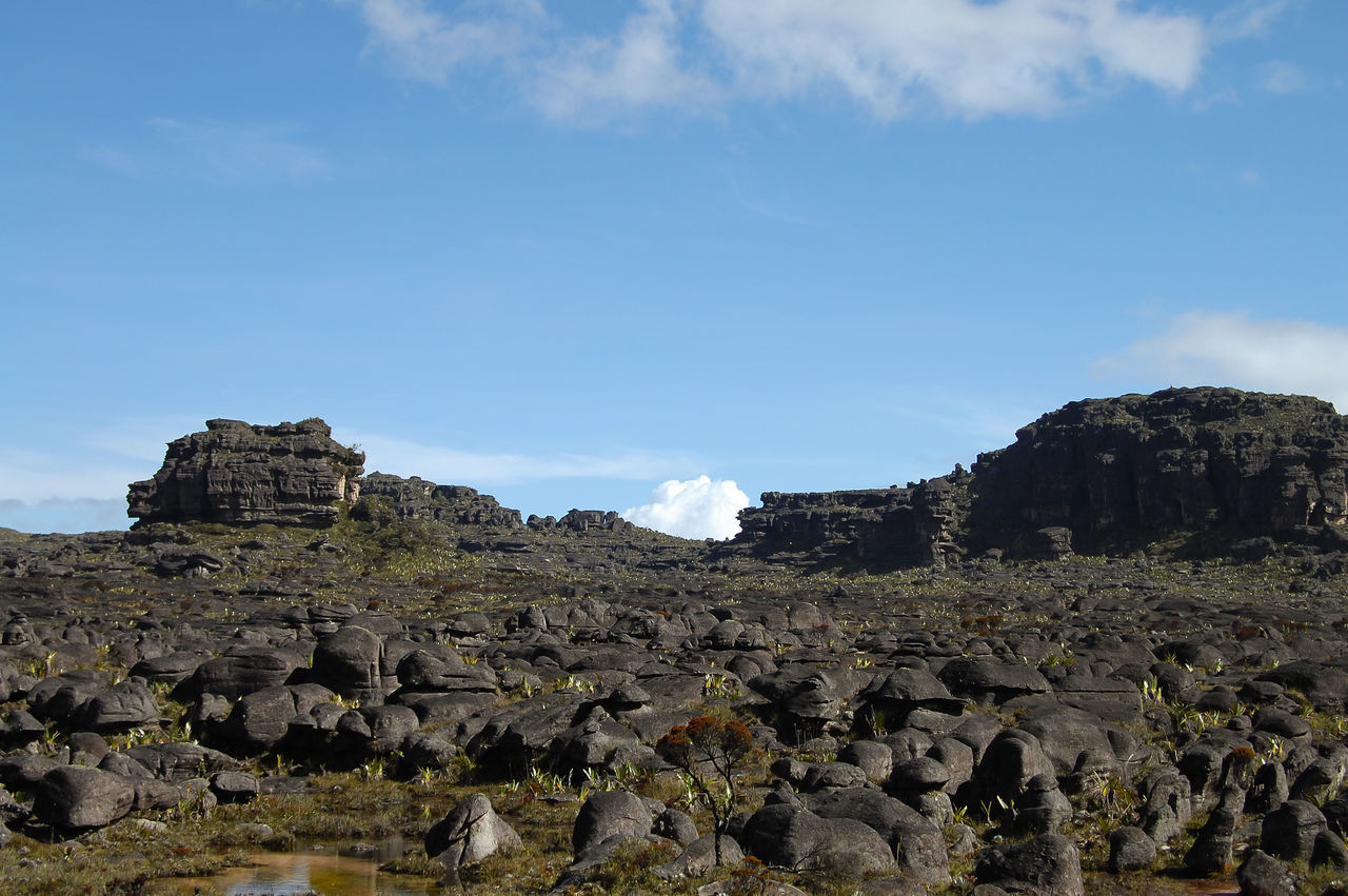 Mount Roraima Venezuela Mount Roraima Mountain Roraima Tepuy