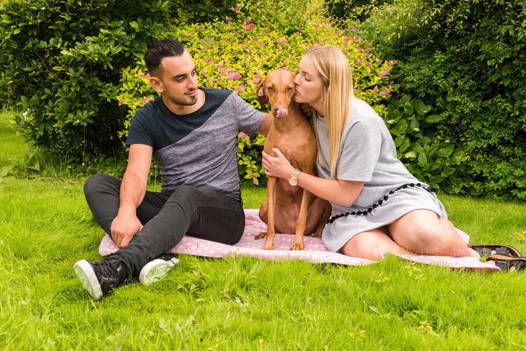 Casual Clothing Day Dog Enjoyment Field Friendship Fun Grass Grassy Green Color Growth Hungarian Vizsla Leisure Activity Lifestyles Lying Down Outdoors Park Portrait Relaxation Resting Sitting Tree