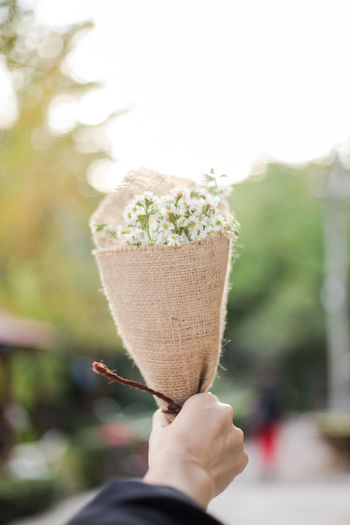 Cropped hand holding bouquet against clear sky