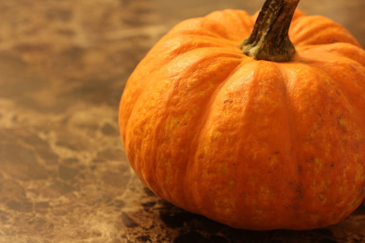Close-up of pumpkin