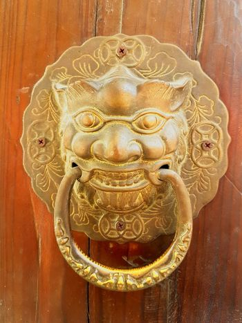 No People Close-up Indoors  Day Lion - Feline Backgrounds Asian Art Asian Architecture Asian Style
