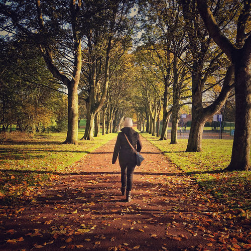 Rear view of woman walking on street amidst trees during autumn