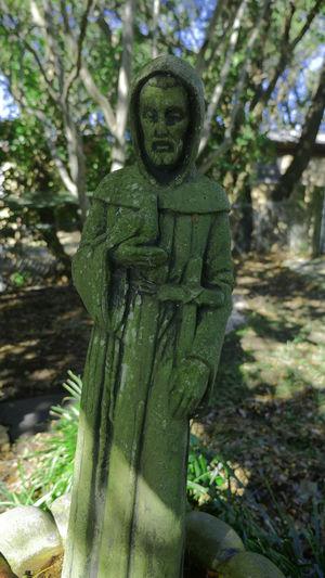 St Francis Catholic Catholic Church Catholicism Saint Francis Statue St Francis Church St. Francis Statue