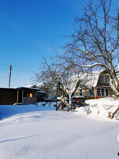 Bare trees by snow covered houses against sky