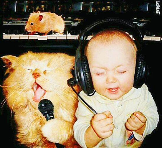 Like father like son, good taste in music, until i found out he was listening Derek & Clive live the little shit..😀Lost In Music Cute Baby Cute Cats Gingers All Together Now Music Is My Life, It Feeds Me Everyday... Baby Needs Boobs, Drinking Milk Out Of Tune Ginger Cat Sing Along Christmas Sing Along Shitting My Pants New Band Start Em YOUNG