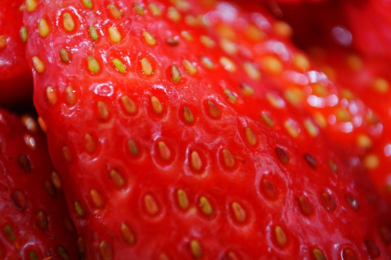 Red Close-up Freshness No People Food Fruit Healthy Eating Indoors  Day Strawberry