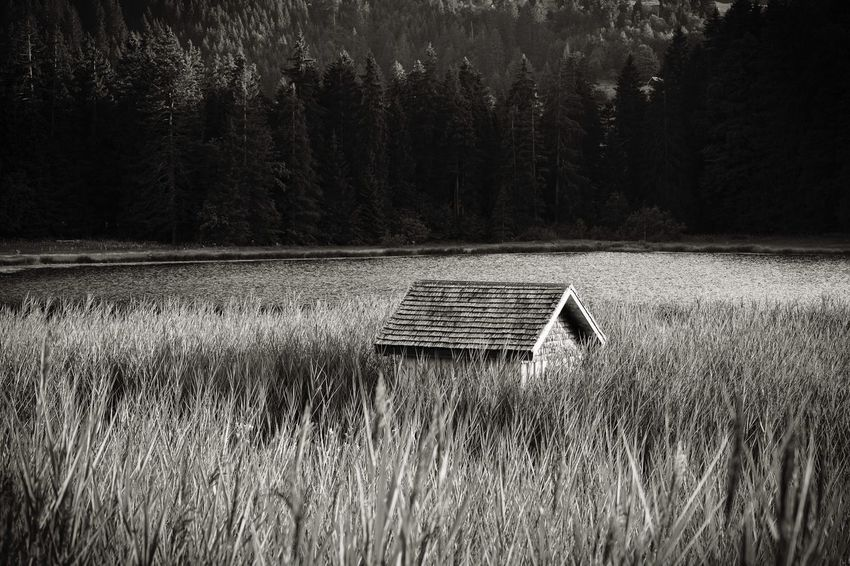 Getting Inspired Monochrome Black And White Blackandwhite Lakeshore Lake House Nature Day Water Land Scenics - Nature Outdoors Grass Beauty In Nature Tranquility