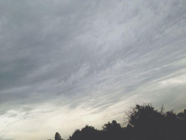 Automne Sky Rain Nature
