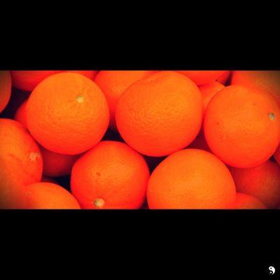 Sequbu Orange Summer