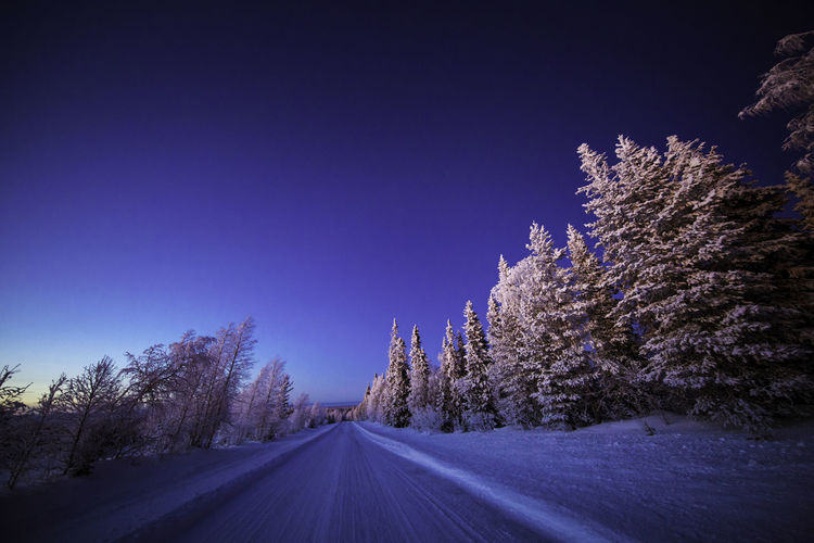 Snowcapped road amidst trees on field during winter