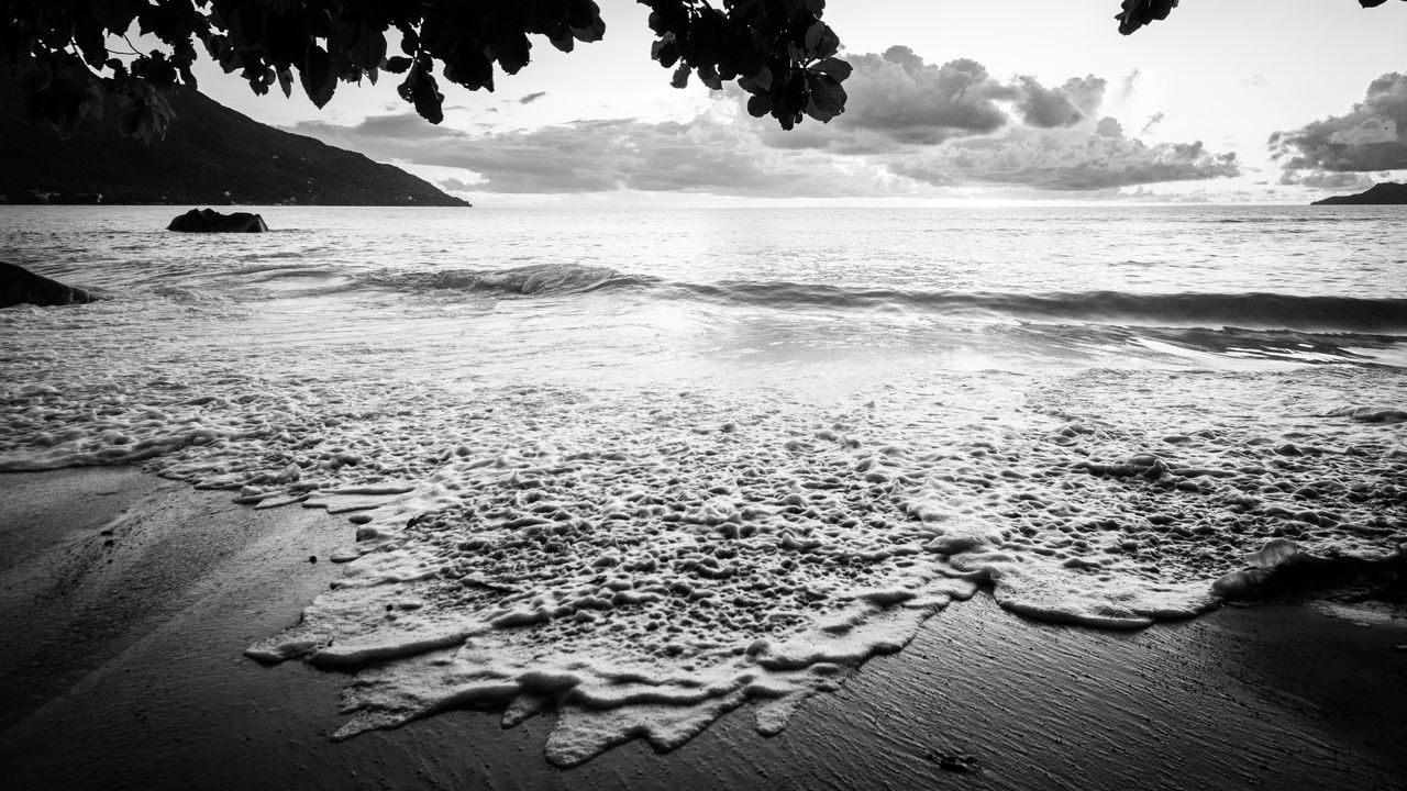 water, sea, nature, beauty in nature, tranquility, beach, scenics, shore, tranquil scene, sky, outdoors, sand, no people, horizon over water, day, mountain, tree