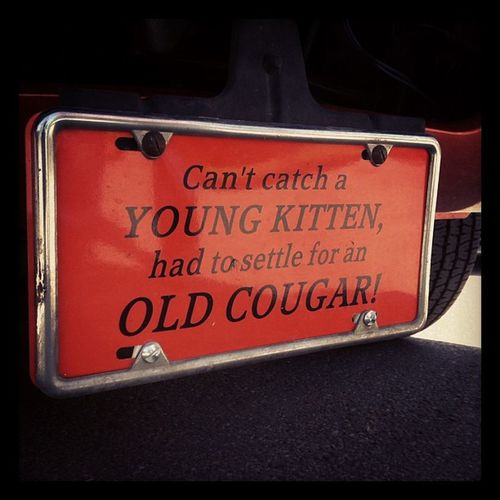 Uh huh. This is my new catchphrase. Oldcougar