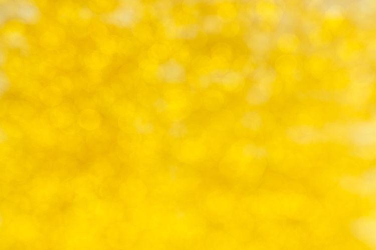 Full frame of yellow orange flower