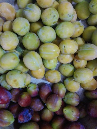Fruits Yellow Plums Mixed Plums Plum Fruit Plums Prunus Prunus Americana Slow Food Slowfood No People Fruit Full Frame Backgrounds Close-up Ready-to-eat Huaweiphotography Eyeem Market WOLFZUACHiV Photos Wolfzuachiv Veronica Ionita Ionita Veronica Huawei Photography WOLFZUACHiV Photography Fruits Abundance