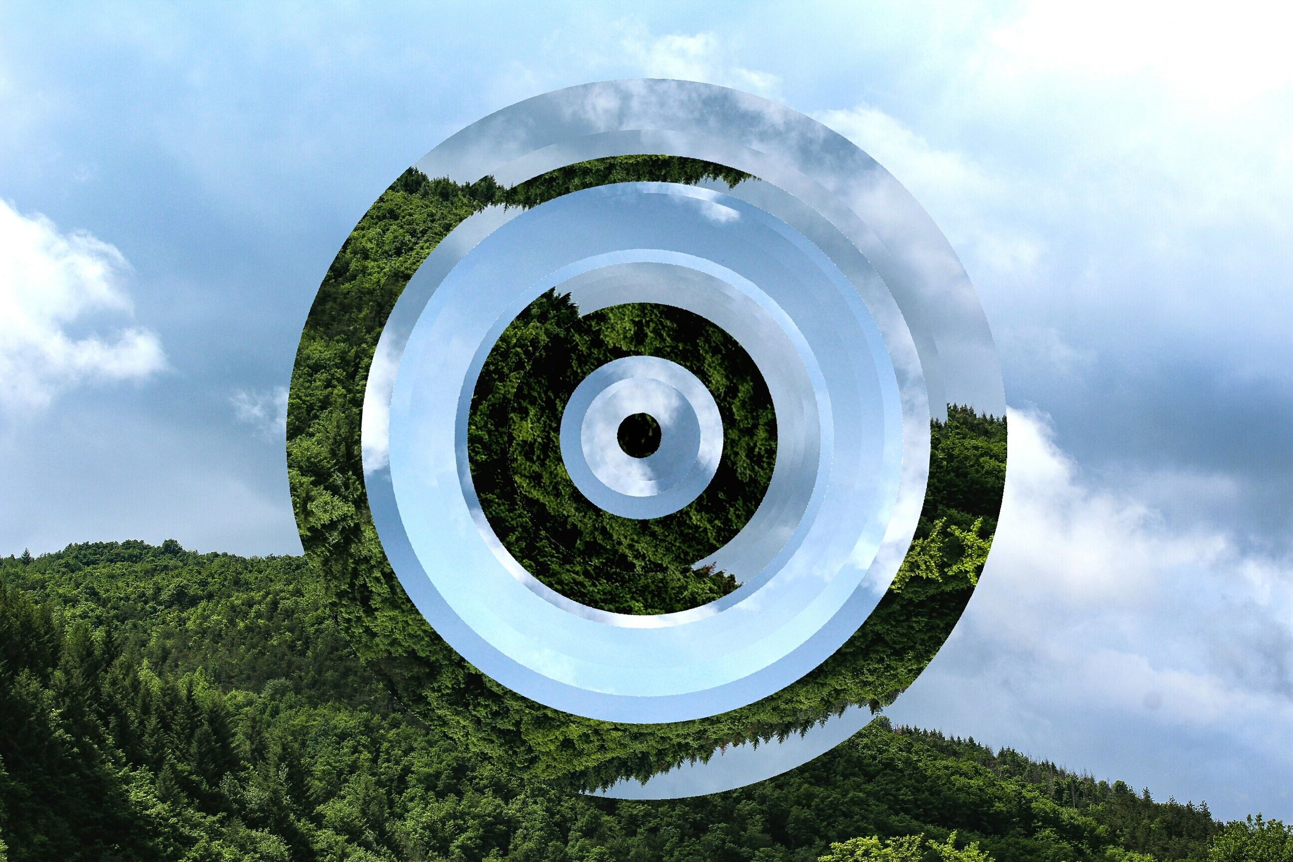 circle, sky, tree, cloud - sky, green color, no people, day, outdoors, growth, nature, close-up