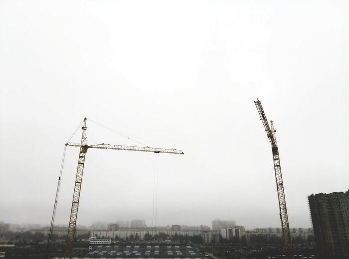 Fog Business