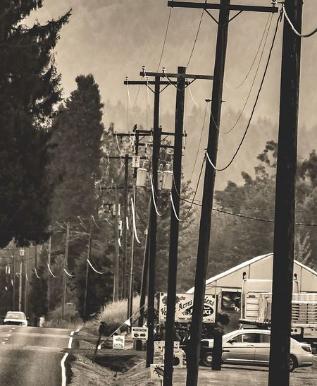Gridlove EyeEm 2017 Collection PowerLinesAbove BlackandWhite VIntage GridLinePhotography Power Photography Transportation WA State Photography Telephone Line County Roads PowerLine Beauty In Simplicity Summer 2017 PNW Photography My Journey With Photography Pnwisbest Cable Travel Nikonphotography