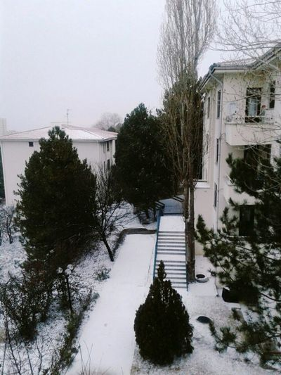 Snow ❄ Outside_my_window Cold Weather Beautiful ♥ Taking Photos