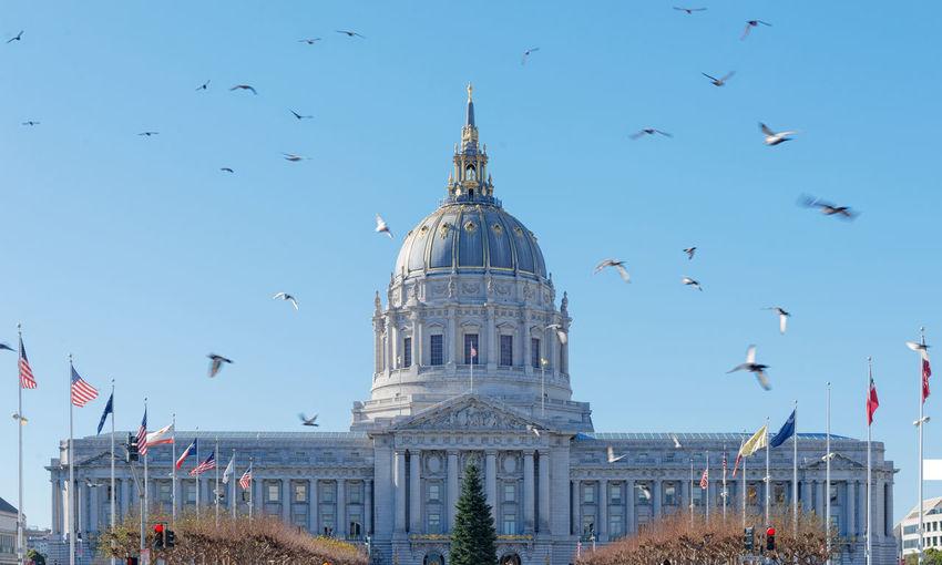 Flock of birds flying over church against sky